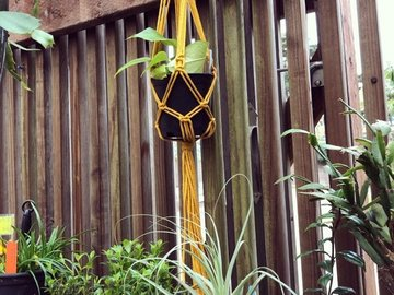 Selling: Yellow Macrame Plant Hanger