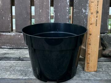 Selling: Black 6 inch plastic nursery pot