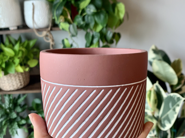 "Selling: 4"" Terracotta Planter (with drainage hole)"