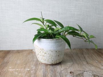 Selling: beautiful handmade white cover pot, #21-66